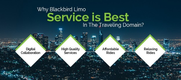 why-blackbird-limo-service-is-best-in-the-traveling-domain