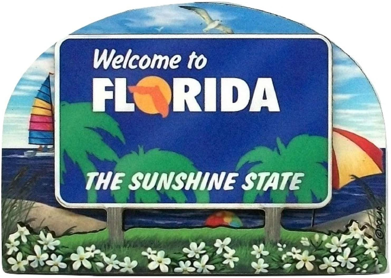 Florida tourism with blackbird
